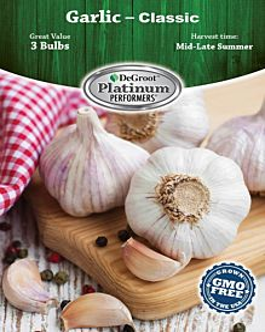 Garlic, Classic Bulb