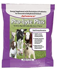 Pro Lyte Plus Livestock Electrolyte Supplement
