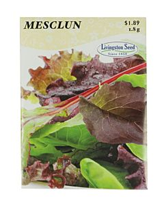 Mesclun Mix Lettuce Seed Packet - 1.8 g