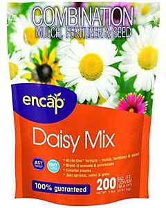 Daisy Flower Mix - 2 lb