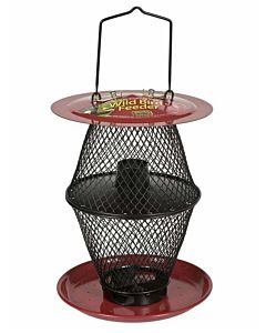 Sunflower Lantern Wild Bird Feeder - Red