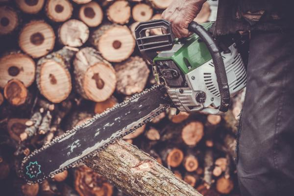 How to Pick a Chainsaw