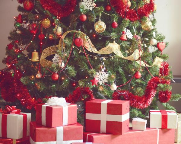 How to Keep Your Live Christmas Tree Fresh
