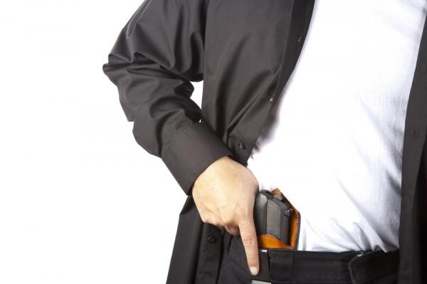 New Idaho Gun Concealment Law