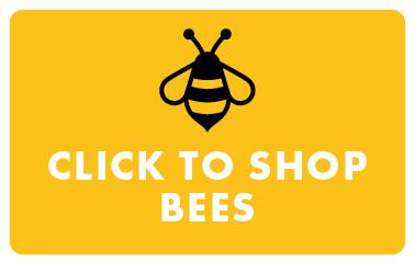Shop Bees