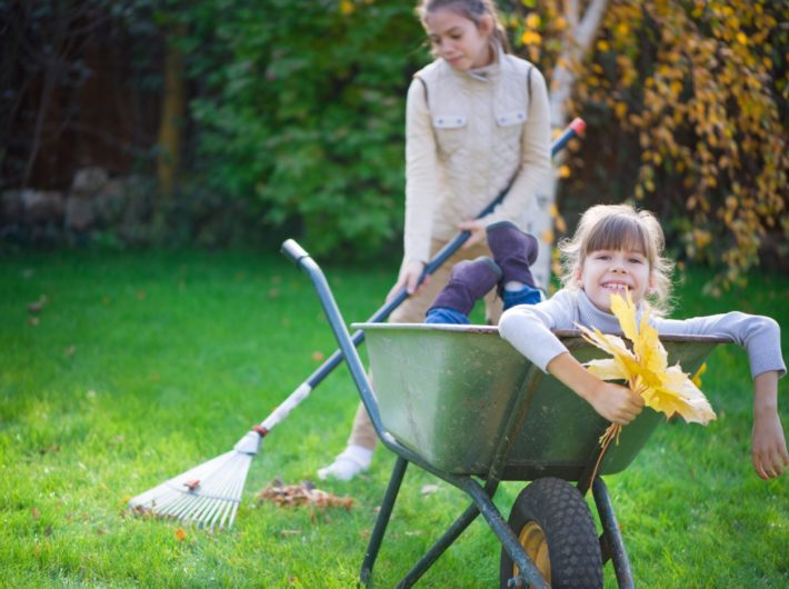 Preparing Your Lawn for Fall